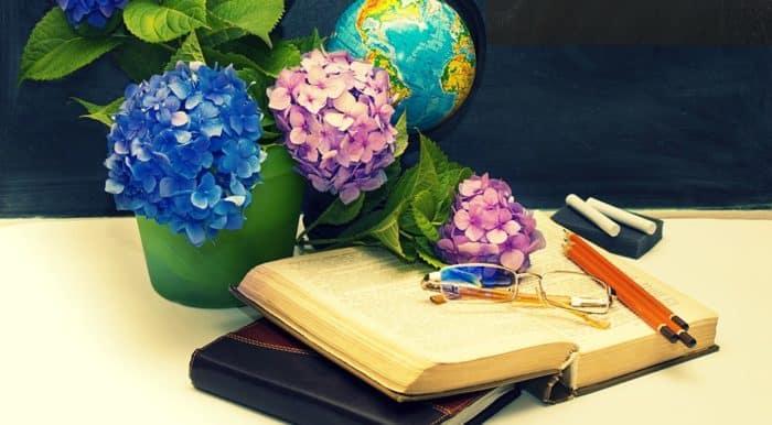 08029b8a586439 20 dicas de presentes para professores | Familia