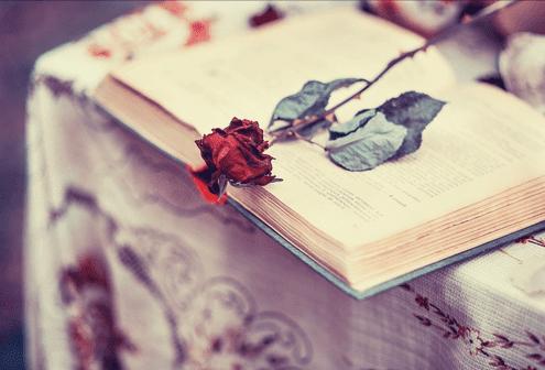 As 20 Frases Mais Românticas Para Surpreender O Amor Da Sua